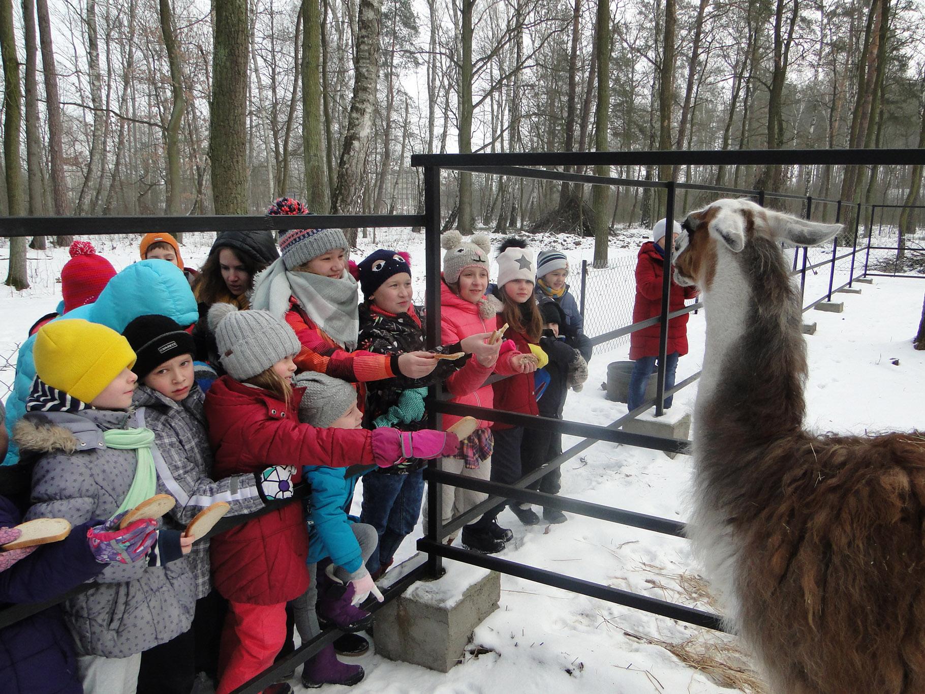 ffee521ab3681b Wioska Pod Kogutem: Ferie zimowe i zimowiska dla dzieci